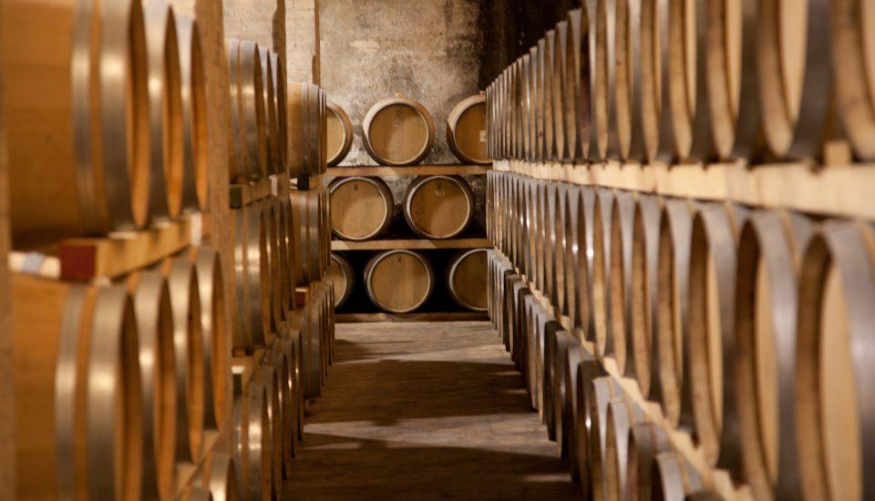montefalco-azienda-vinicola-cantina